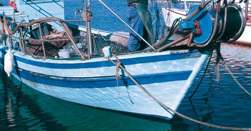 pesca_shoreline