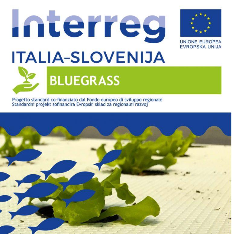 Bluegrass progetto Ita/Slo